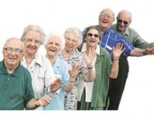 Programa Juniors&Seniors