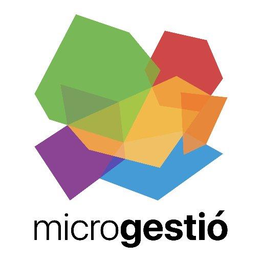 Microgestió