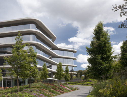 Grifols culmina un any de creixement i aprova distribuir la xifra rècord de 265 milions d'euros en dividends