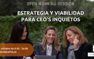 Estratègia i viabilitat per a CEO's inquiets