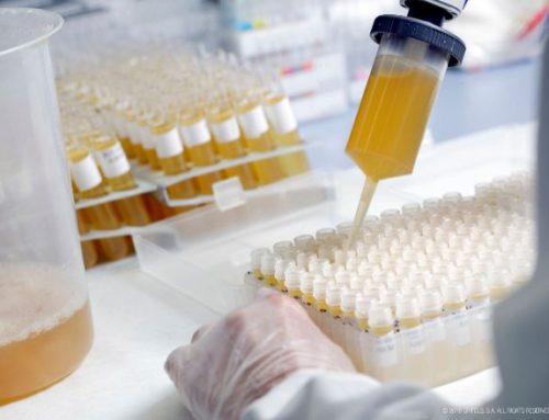 Grifols completa el desenvolupament d'un test molecular per a detectar el virus SARS-CoV-2