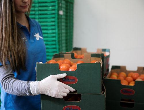"""La Fundació """"la Caixa"""", amb el suport de CaixaBank, recapta més de 700.000 euros per als Bancs d'Aliments de Catalunya"""