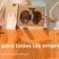 """Open Working Webinar """"Innovar, l'opció per a totes les empreses"""""""
